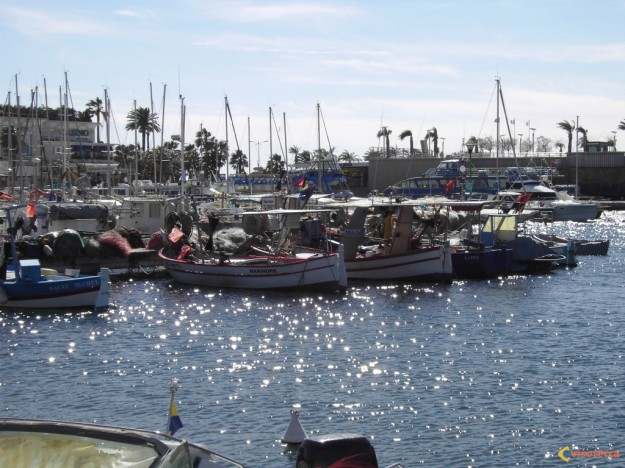 Photo bateaux de p che port de saint rapha l - Meteo marine port camargue saint raphael ...