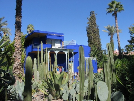 photo dans les jardins de majorelle. Black Bedroom Furniture Sets. Home Design Ideas