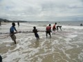 Freetown : Aberdeen plage : netfishing