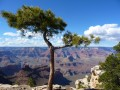 Grand Canyon Village Rim Trail