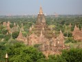 Plaine de Bagan