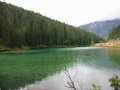 Lac Olive