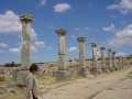Site romain de Volubilis 3
